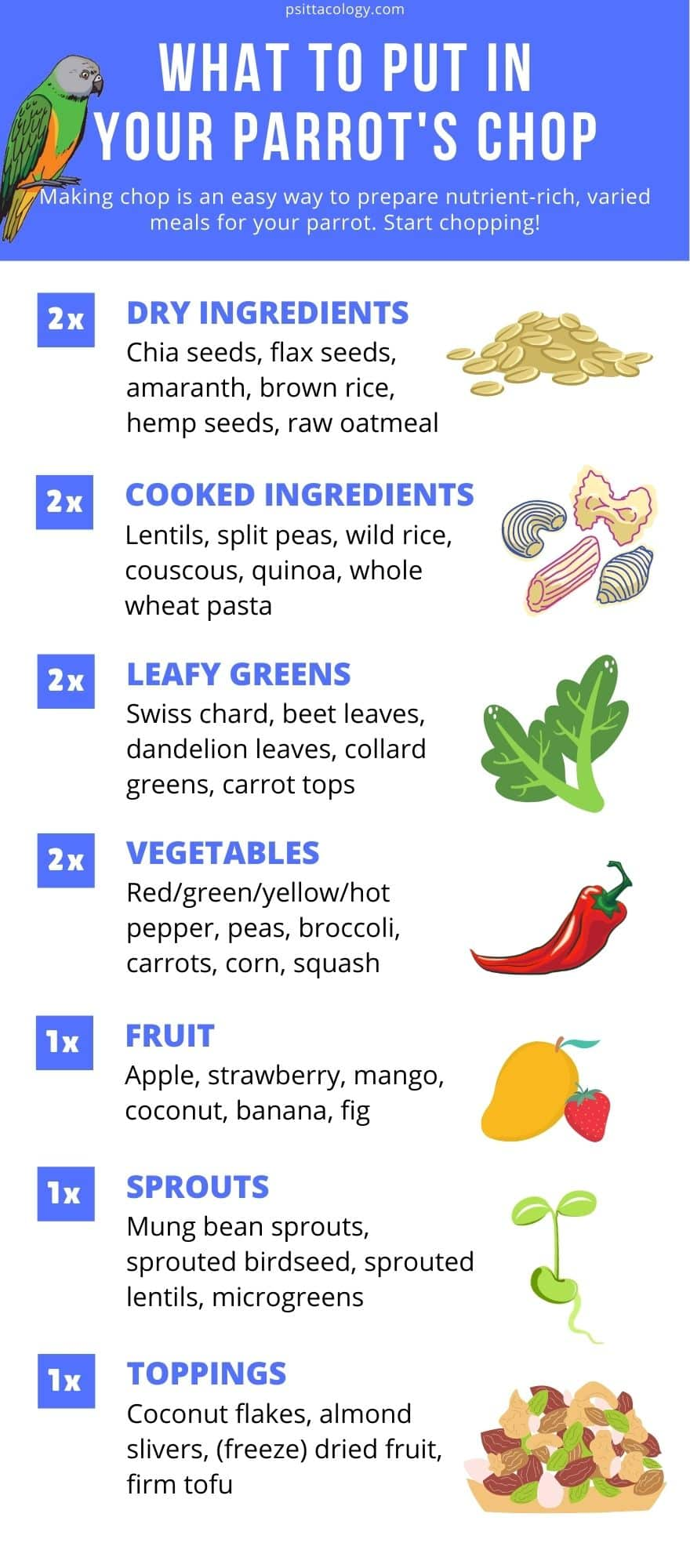 Infographic listing possible ingredients for chop food for parrots.